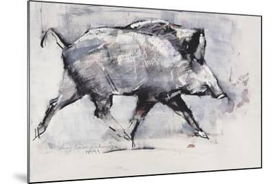 Young Boar, Bialowieza, Poland-Mark Adlington-Mounted Giclee Print