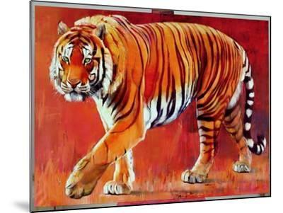 Bengal Tiger-Mark Adlington-Mounted Giclee Print