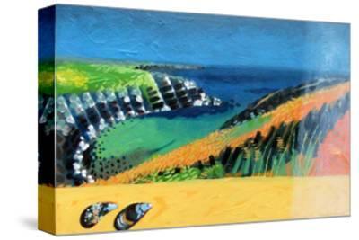Pembroke-Paul Powis-Stretched Canvas Print