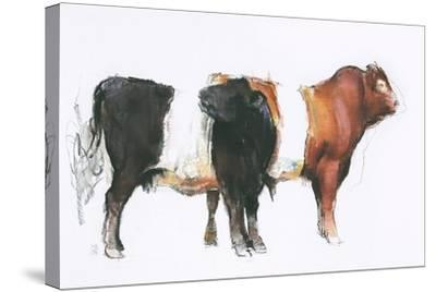 Belties, 2006-Mark Adlington-Stretched Canvas Print