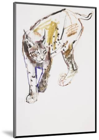 European Lynx-Mark Adlington-Mounted Giclee Print