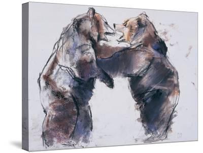 Playfight, 2001-Mark Adlington-Stretched Canvas Print