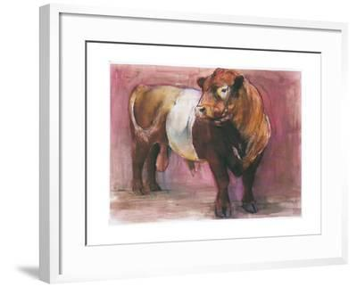 Zeus, Red Belted Galloway Bull, 2006-Mark Adlington-Framed Giclee Print