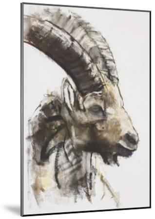 Testa, 2005-Mark Adlington-Mounted Giclee Print