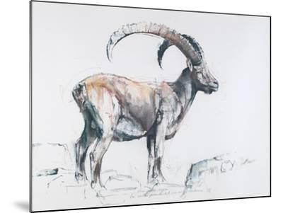 Venerando Stambecco, 2006-Mark Adlington-Mounted Giclee Print