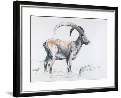 Venerando Stambecco, 2006-Mark Adlington-Framed Giclee Print