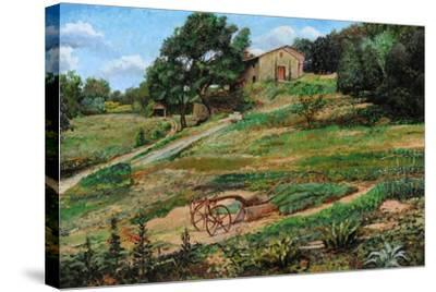 Plough, Cortona, 1999-Trevor Neal-Stretched Canvas Print
