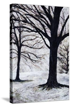 Winter Trees, Greenwich Park, 2004-Ellen Golla-Stretched Canvas Print