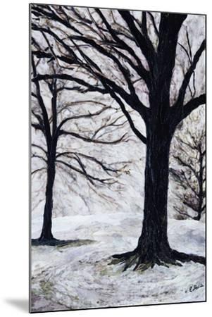 Winter Trees, Greenwich Park, 2004-Ellen Golla-Mounted Giclee Print