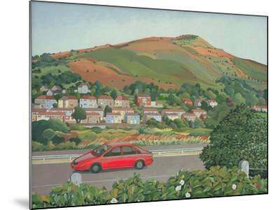 From the Train, South Wales-Anna Teasdale-Mounted Giclee Print