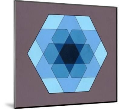 Overlaying Hexagons, 2009-Peter McClure-Mounted Giclee Print