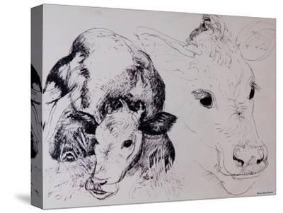 Calves, Gt Garnetts II-Brenda Brin Booker-Stretched Canvas Print