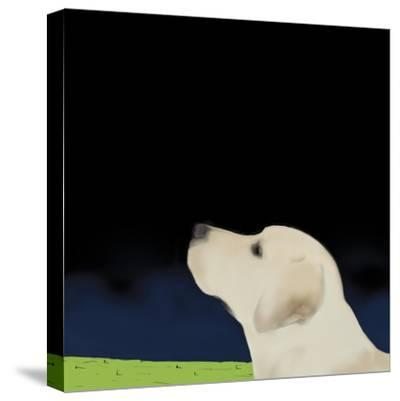 Yellow Dog Profile, 2008-Marjorie Weiss-Stretched Canvas Print