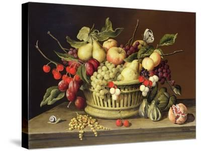 The Snail and the Pomegranate-Brian Irving-Stretched Canvas Print