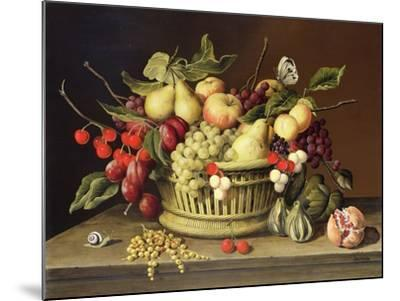 The Snail and the Pomegranate-Brian Irving-Mounted Giclee Print