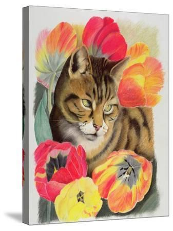 Stripy and Tulip-Anne Robinson-Stretched Canvas Print