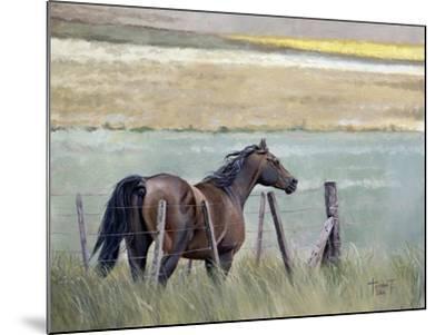 Dreams of Freedom, 2010-Cruz Jurado Traverso-Mounted Giclee Print