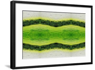 Unnatural 2.1-Giovanni Cafagna-Framed Giclee Print