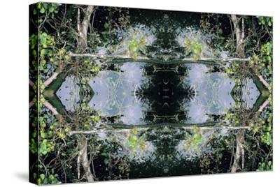 Unnatural 73-Giovanni Cafagna-Stretched Canvas Print
