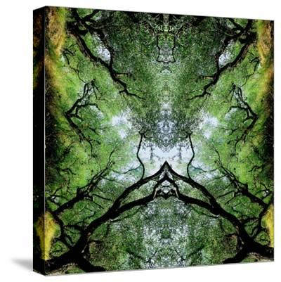 Unnatural 75-Giovanni Cafagna-Stretched Canvas Print