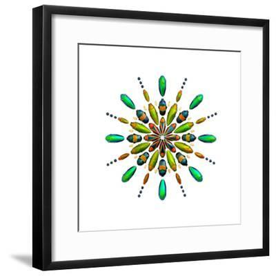 Prism No. 3-Christopher Marley-Framed Photographic Print