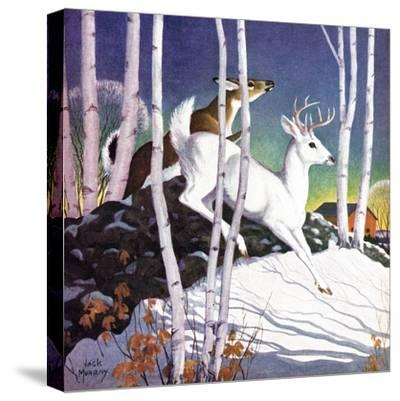 Winter Deer - Child Life-Jack Murray-Stretched Canvas Print
