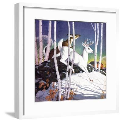 Winter Deer - Child Life-Jack Murray-Framed Giclee Print