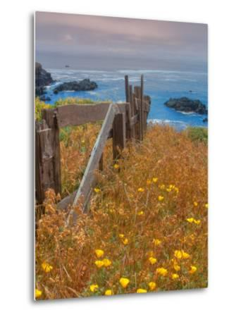 Down by the Sea Ranch-Vincent James-Metal Print