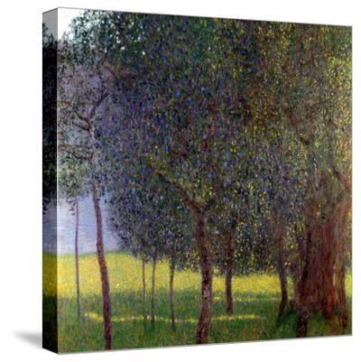 Fruit Trees, 1901-Gustav Klimt-Stretched Canvas Print