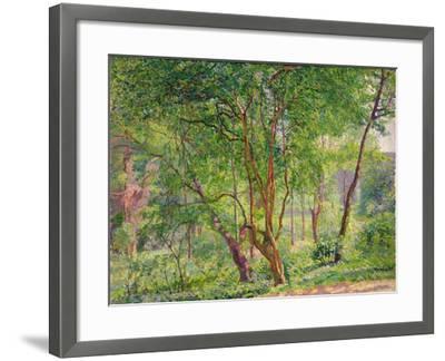 Panshanger Park-Spencer Frederick Gore-Framed Giclee Print