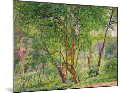 Panshanger Park-Spencer Frederick Gore-Mounted Giclee Print