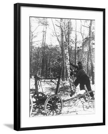 A Couple Cutting Down a Tree for Firewood, 21st February 1947-German photographer-Framed Photographic Print