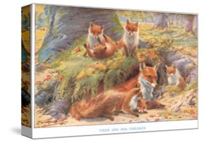 Vixen and Her Children, Illustration from 'Country Ways and Country Days'-Louis Fairfax Muckley-Stretched Canvas Print