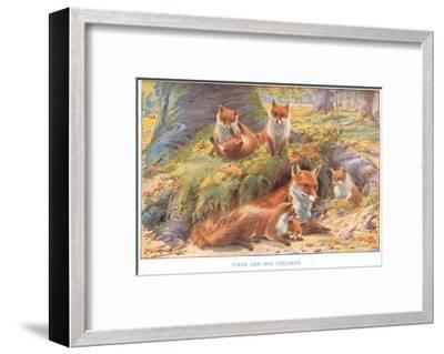 Vixen and Her Children, Illustration from 'Country Ways and Country Days'-Louis Fairfax Muckley-Framed Giclee Print