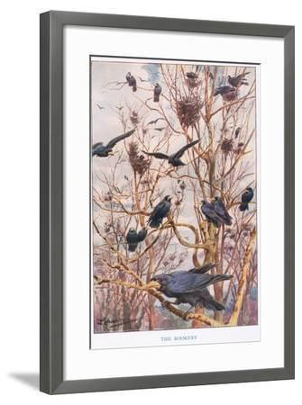 The Rookery, Illustration from 'Country Ways and Country Days'-Louis Fairfax Muckley-Framed Giclee Print