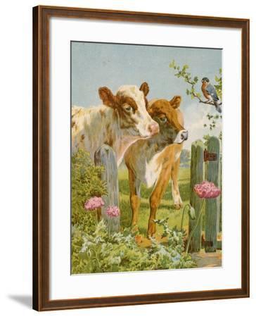 A Piping Bullfinch-English School-Framed Giclee Print
