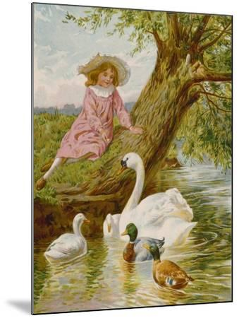 Feathered Pets-English School-Mounted Giclee Print