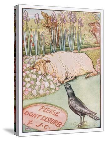 And the Sheep Went to Sleep, Illustration from 'Johnny Crow's Party', c.1930-Leonard Leslie Brooke-Stretched Canvas Print