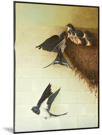 Hungry Mouths, 2011-Pat Scott-Mounted Giclee Print