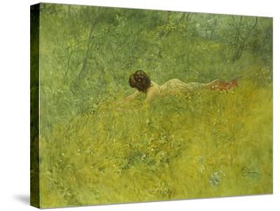 On the Grass; I Grongraset, 1902-Carl Larsson-Stretched Canvas Print