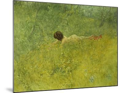 On the Grass; I Grongraset, 1902-Carl Larsson-Mounted Giclee Print