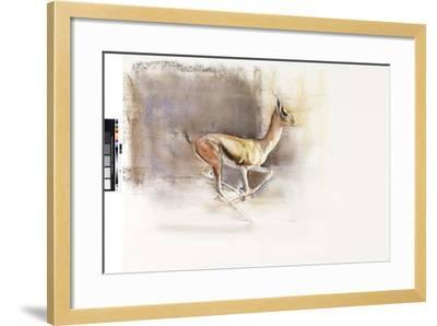 Desert Wind (Arabian Gazelle), 2010-Mark Adlington-Framed Giclee Print