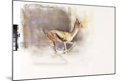 Desert Wind (Arabian Gazelle), 2010-Mark Adlington-Mounted Giclee Print