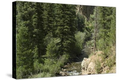 Rio Del Pueblo in the Sangre De Cristo Mountains, New Mexico--Stretched Canvas Print