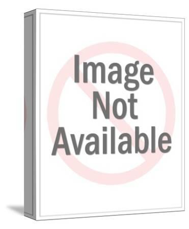 Neil Diamond Photo By Artcom
