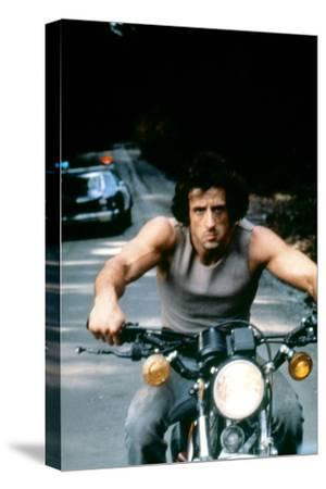 First Blood 1982 Directed by Ted Kotcheff Sylvester Stallone--Stretched Canvas Print
