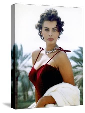 Sophia Loren--Stretched Canvas Print