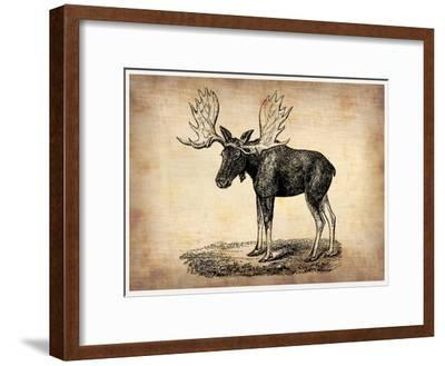 Vintage Moose-NaxArt-Framed Premium Giclee Print