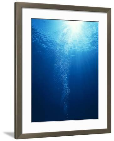 Bright Light Shooting To Surface of Deep Blue Sea with Trail of Bubbles--Framed Photographic Print