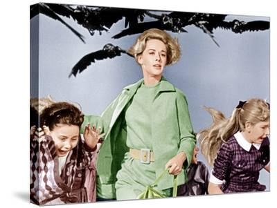 The Birds, Tippi Hedren, 1963--Stretched Canvas Print